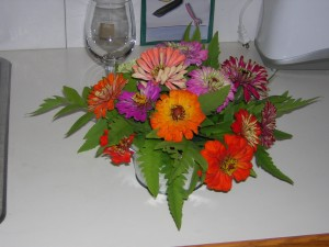 Zinnias provide a blast of color!