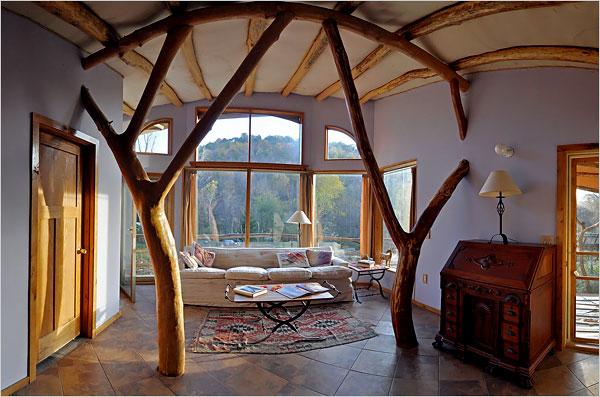 Tree architect living room