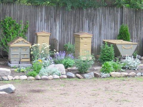 beehive-garden