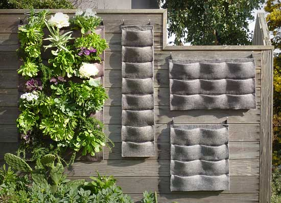 Blog archive plants on walls an easy for Vertical garden designs