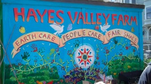 Hayes Valley Farm1
